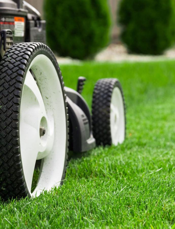 Få en flot grøn græsplæne – 5 simple trin til en indbydende have