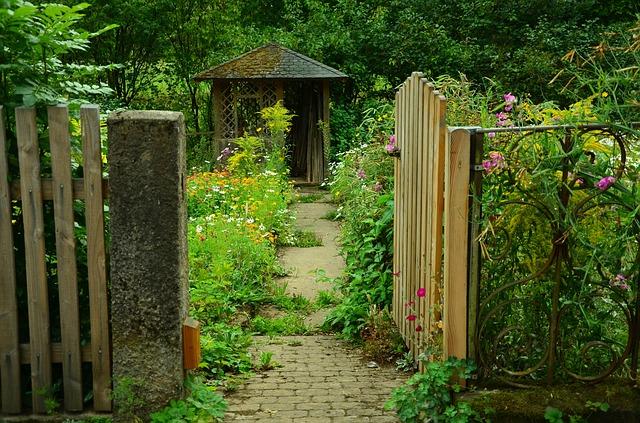 3 tips til den nemme have – sådan får du en lækker have, der er nem at holde